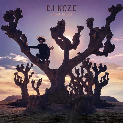 Top Albums DJ Koze
