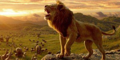 The Lion King roar