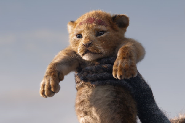 The Lion King cub