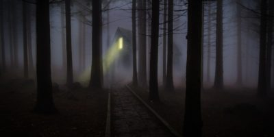 horror podcasts forest 2