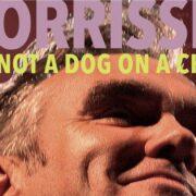Morrissey I Am Not a Dog