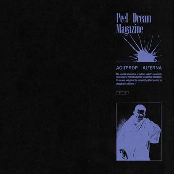 Bandcamp Picks Peel Dream Magazine