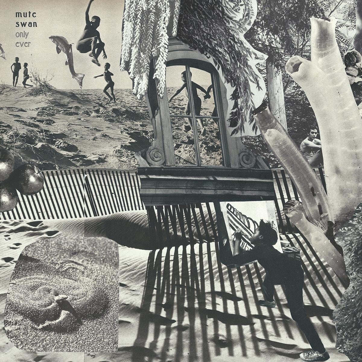 Mute Swan album cover