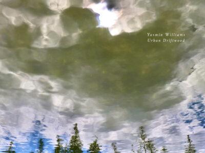 Yasim Williams album cover