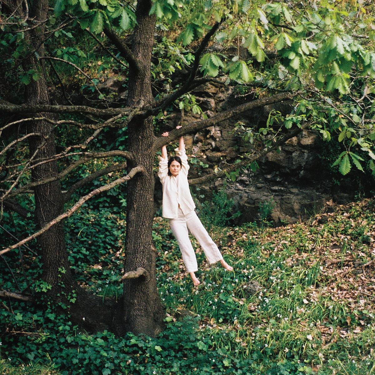 Maple Glider Album
